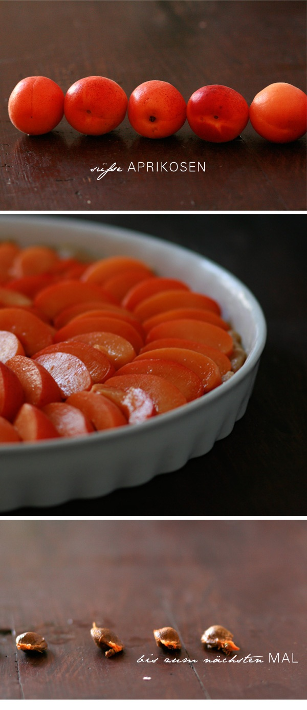 aprikose - Kopie