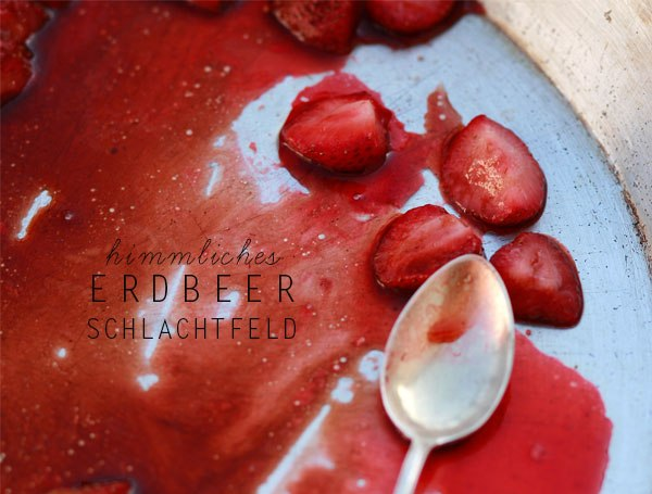 erdbeeren - Kopie